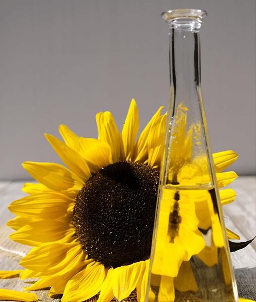 4. 508 x 600 - Sunflower Oil